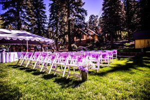 Chairs and Tent for the wedding