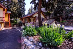 Bountiful Cabin from the Center Garden