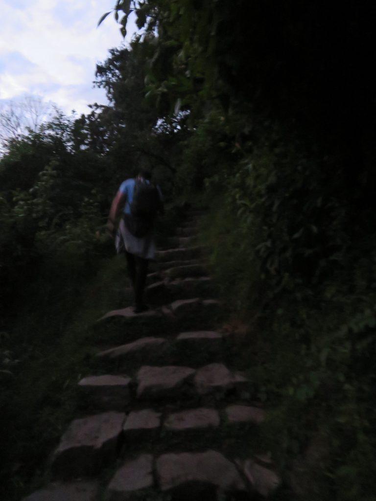 Visiting Machu Picchu   Machu Picchu Steps
