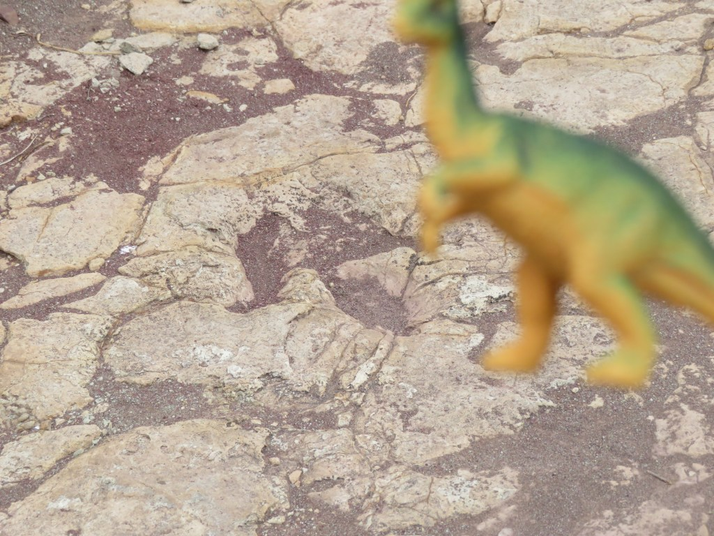 Toro Toro National Park | Dinosaur Footprints