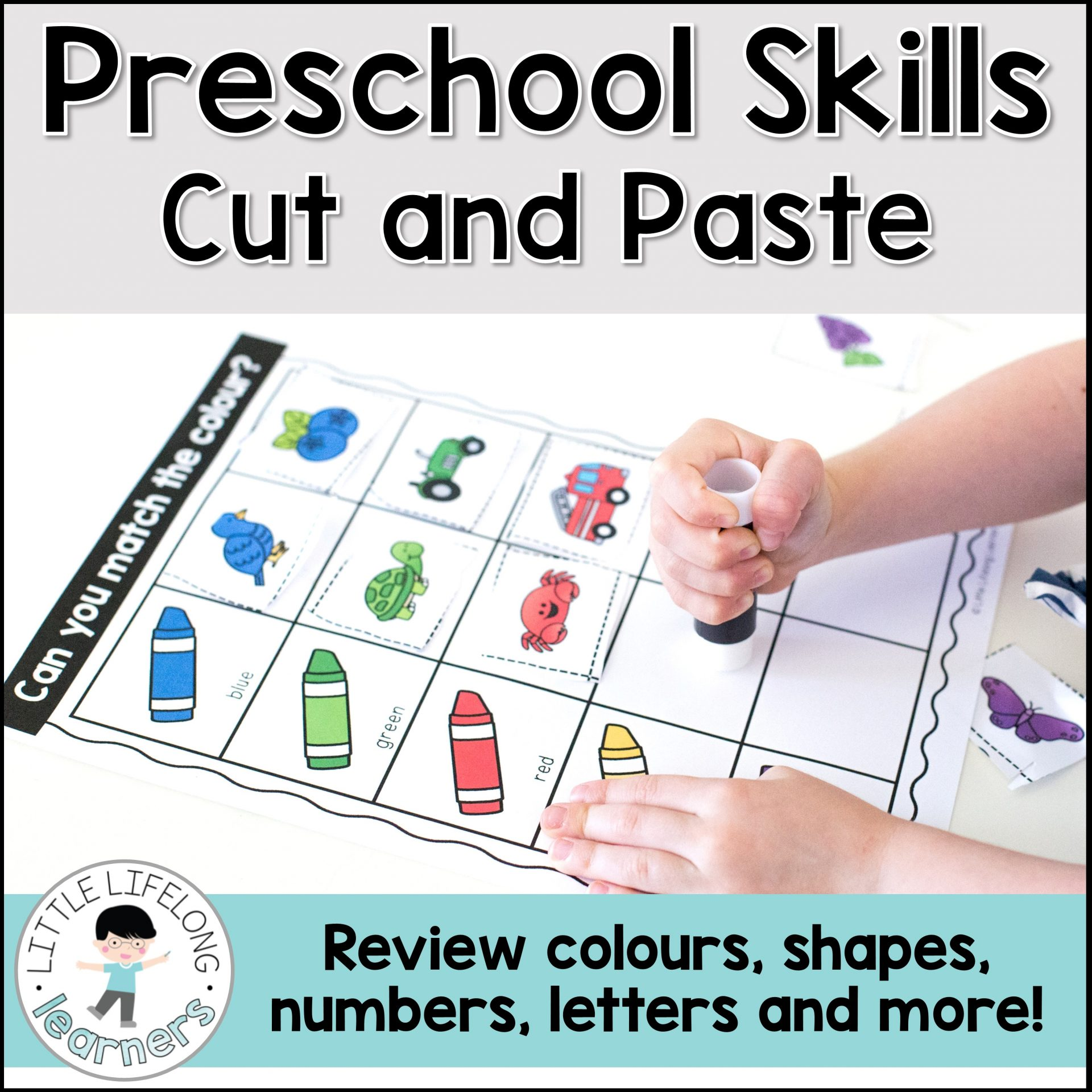 Preschool Sorting Skills