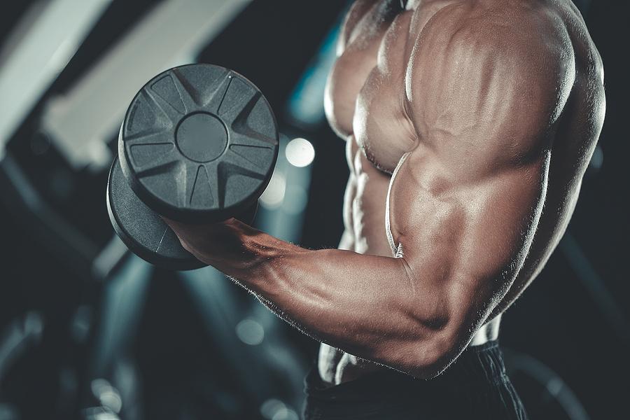 glycogène et gain musculaire