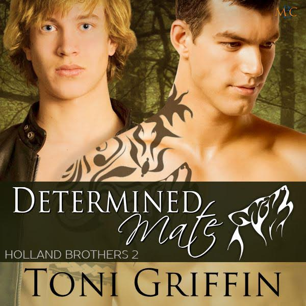 determined mate book cover