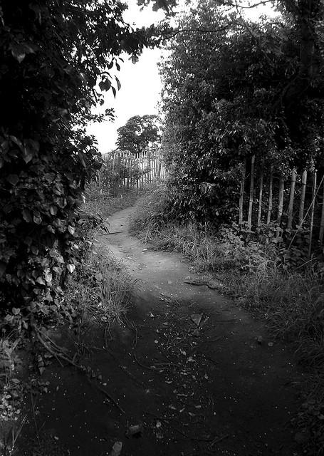 Path is often unclear