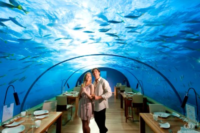 Top Luxury Dining Spots for Your Maldives Honeymoon ...