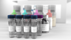 reagent diagnostic kit antibodies