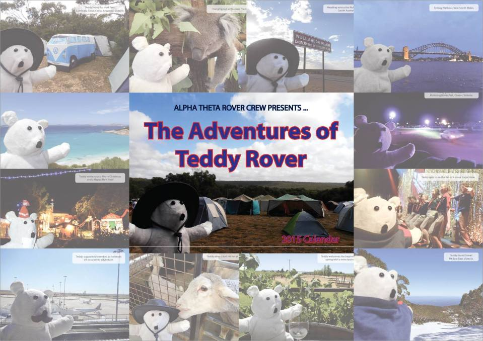 Teddy Rover calendars 📅