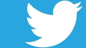 Twitter   Alphawings
