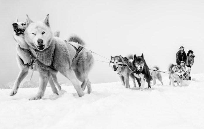 Michaud-Alpimages©Thomas Roulin-8400-2