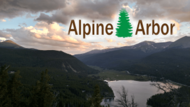 Alpine Arbor
