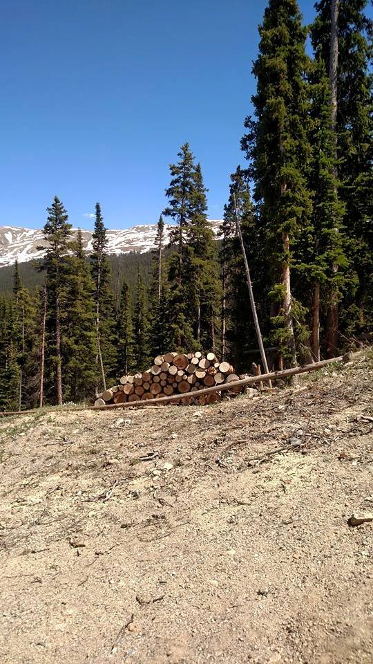 Stacked Tree Stumps