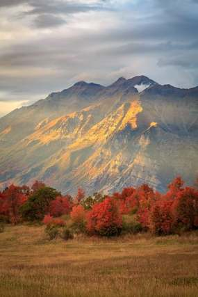 Johnny_Adolphson_Fall color on Squaw Peak with golden glow on Timpanogos Provo Utah