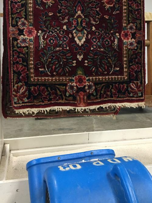 Area Rug Cleaning Speed Drying Process