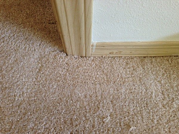 Seattle carpet repair after