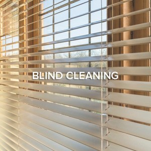 Seattle Blind Cleaning