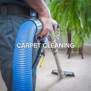 Seattle Capet Cleaning