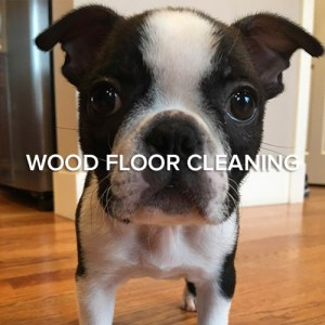 Seattle Wood Floor Cleaning