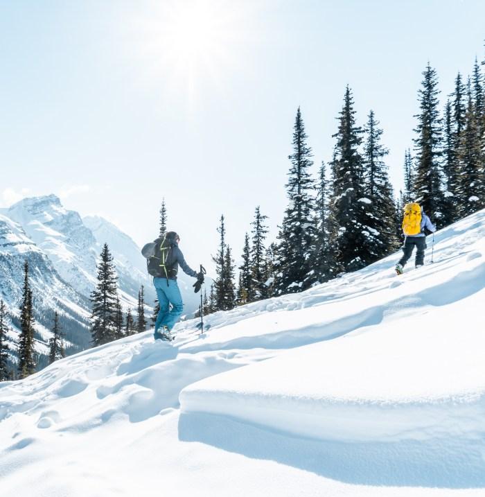 Breaking out of treeling on Dolomite Shoulder