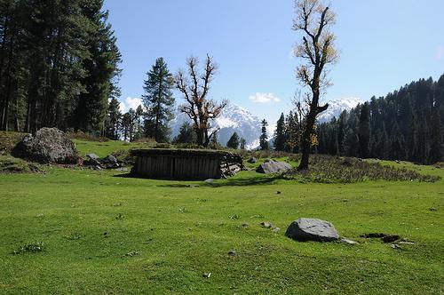 Aru Valley short trek