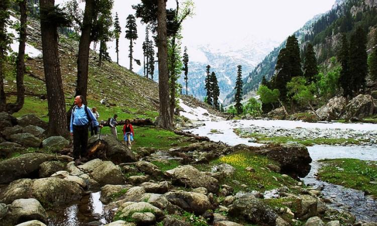 Tarsar Marsar Kashmir Trek