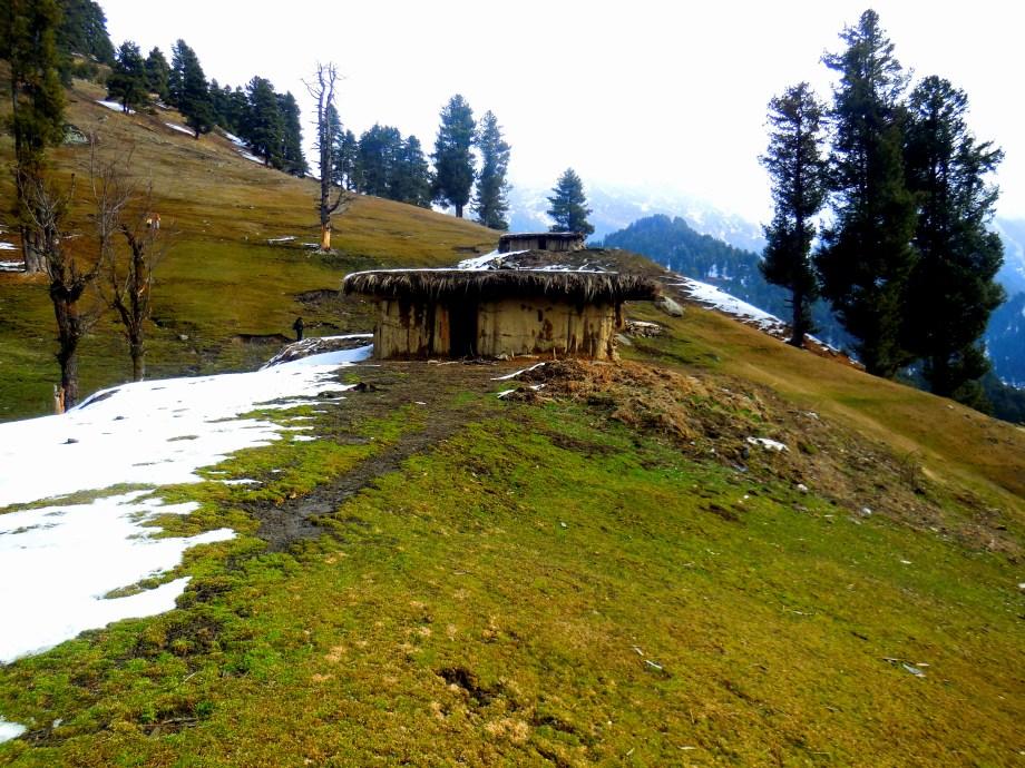 Short treks in Kashmir