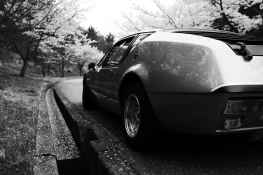 Alpine A310 1600 VE 1973 Japon - 23