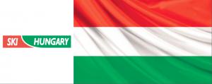 HUNGARIAN LOGO FLAG