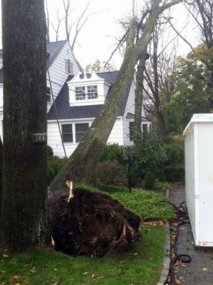 A tree in New Jersey leans dangerously close to a home