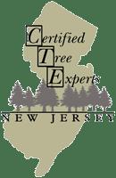 NJCTE-Logo-200