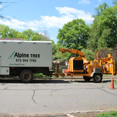 Alpine Tree chip truck and chipper