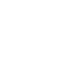 The Alpine Village Band