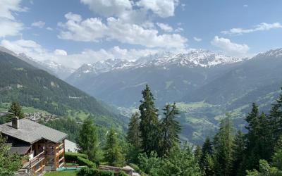 Wie sich Covid-19 auf den Schweizer Immobilienmarkt ausgewirkt hat
