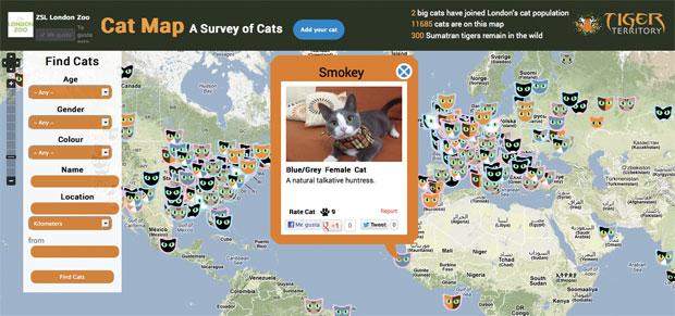 cat_map