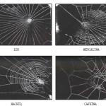 De arañas, drogas y finales inesperados
