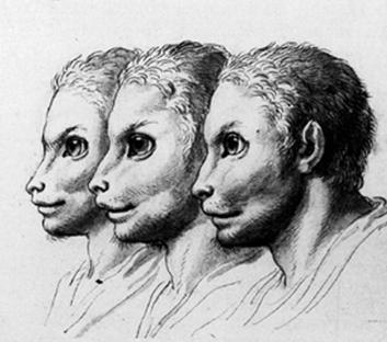 Morphing del siglo XVII