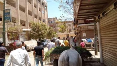 صورة استمرار حملات رفع  الإشغالات بمدينة شبين القناطر