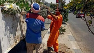 صورة حملات نظافة مكثفة للقضاء على التراكمات و المخلفات بالمنطقة الجنوبية بالقاهرة