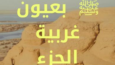 صورة رسول الله ﷺ بعيون غربية الجزء السادس