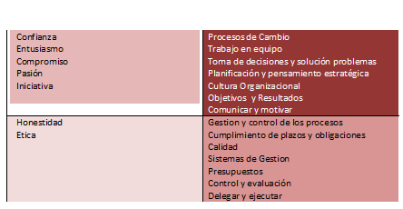 area liderazgo directivo