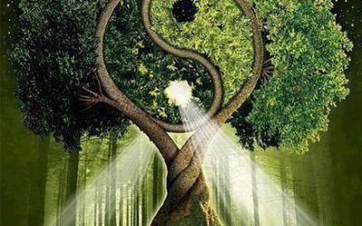 La Felicidad es el arte de elegir bien nuestras metas