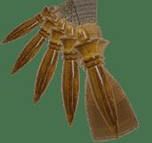 Pendulo egipcio - Alquimia Operativa