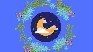 espagiria - ervas regidas pela lua
