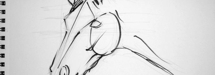 Cómo aprender a dibujar caballos: Método Schwartz
