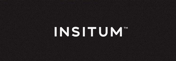 INSITUM, mi escuela y mi trabajo