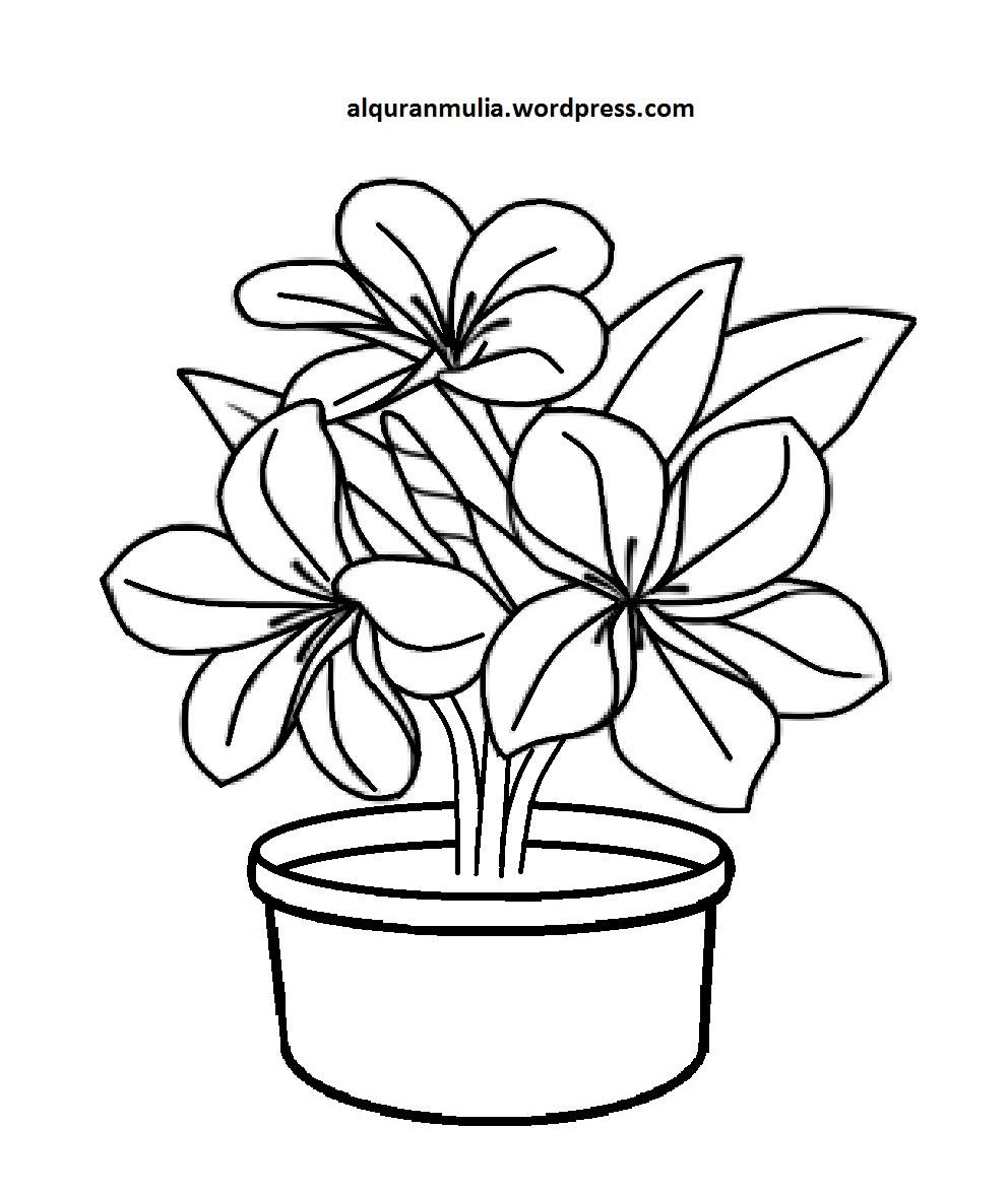 16 Mewarnai Bunga Dalam Pot Terpopuler Lingkar Png