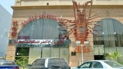 افضل مطاعم سمك في جدة