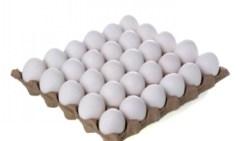 تفسير رؤية البيض المطبوخ في المنام