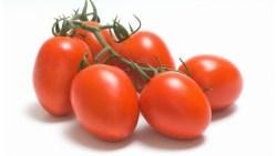 تفسير رؤية توزيع الطماطم البندورة في المنام