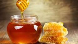 تفسير حلم أكل شمع العسل في المنام