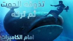 تفسير حلم الحوت الميت في المنام